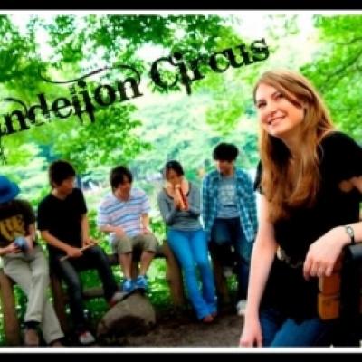 Dandelion Circus