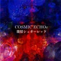 COSMIC ECHOe