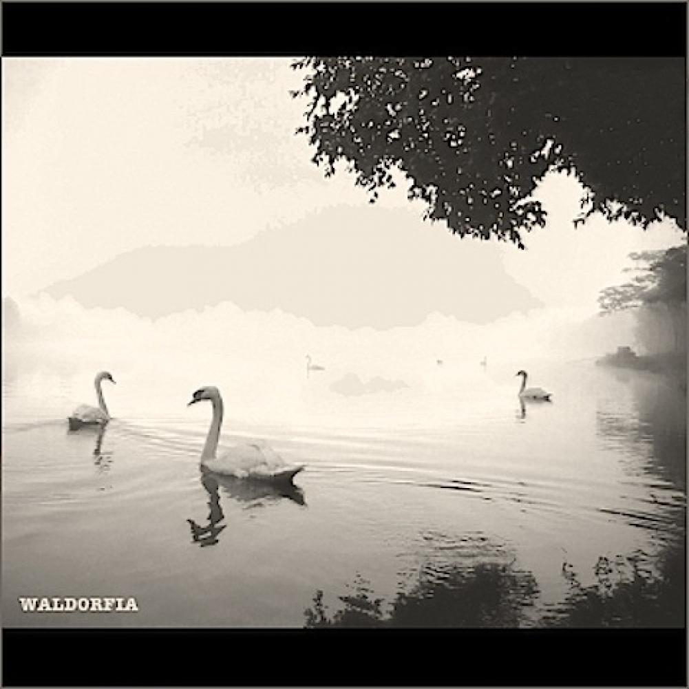Waldorfia