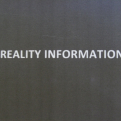 REALITY INFORMATION
