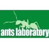 ants laboratory