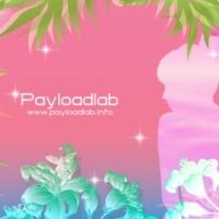 Payloadlab