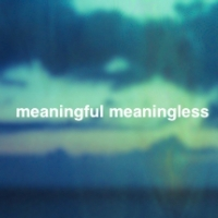 meaningful meaningless (ミーニングフル ミーニングレス)