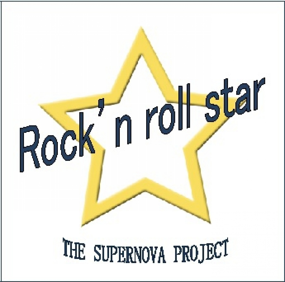 THE SUPERNOVA PROJECT