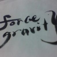 FORCE GRAVITY