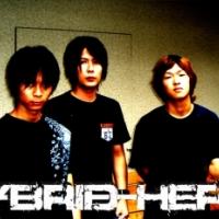 hybrid hertz
