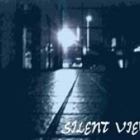 SILENT VIEW