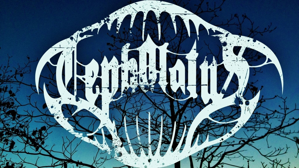 Cephalotus