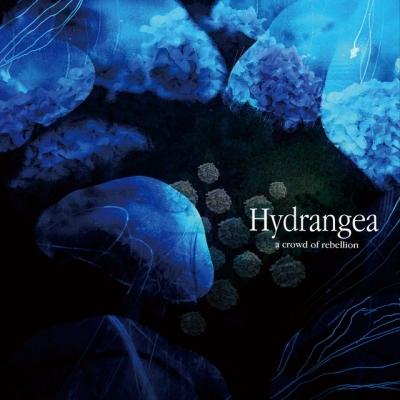 a crowd of rebellion(2012/2/8「Hydrangea」全国販売決定!!)
