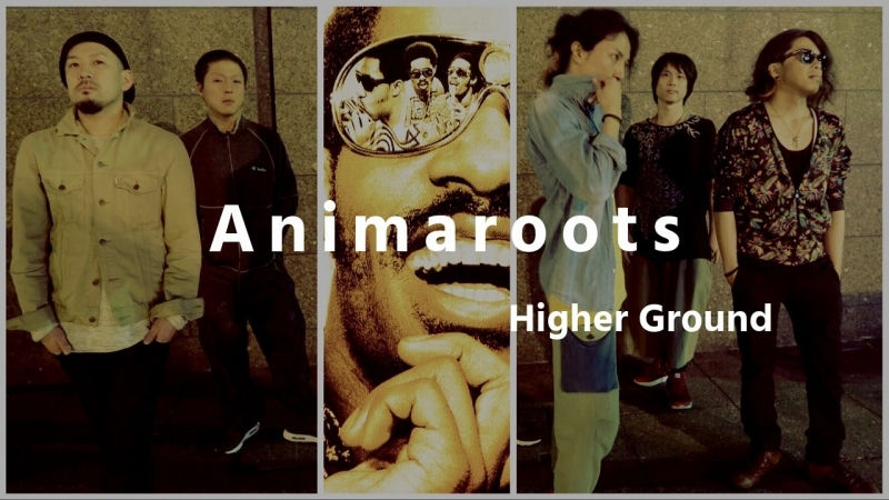 Animaroots - Higher Ground