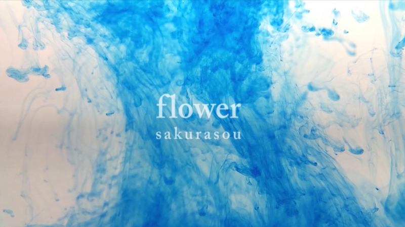 桜草 『flower』 MusicVideo