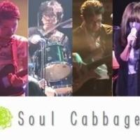 Soul Cabbage