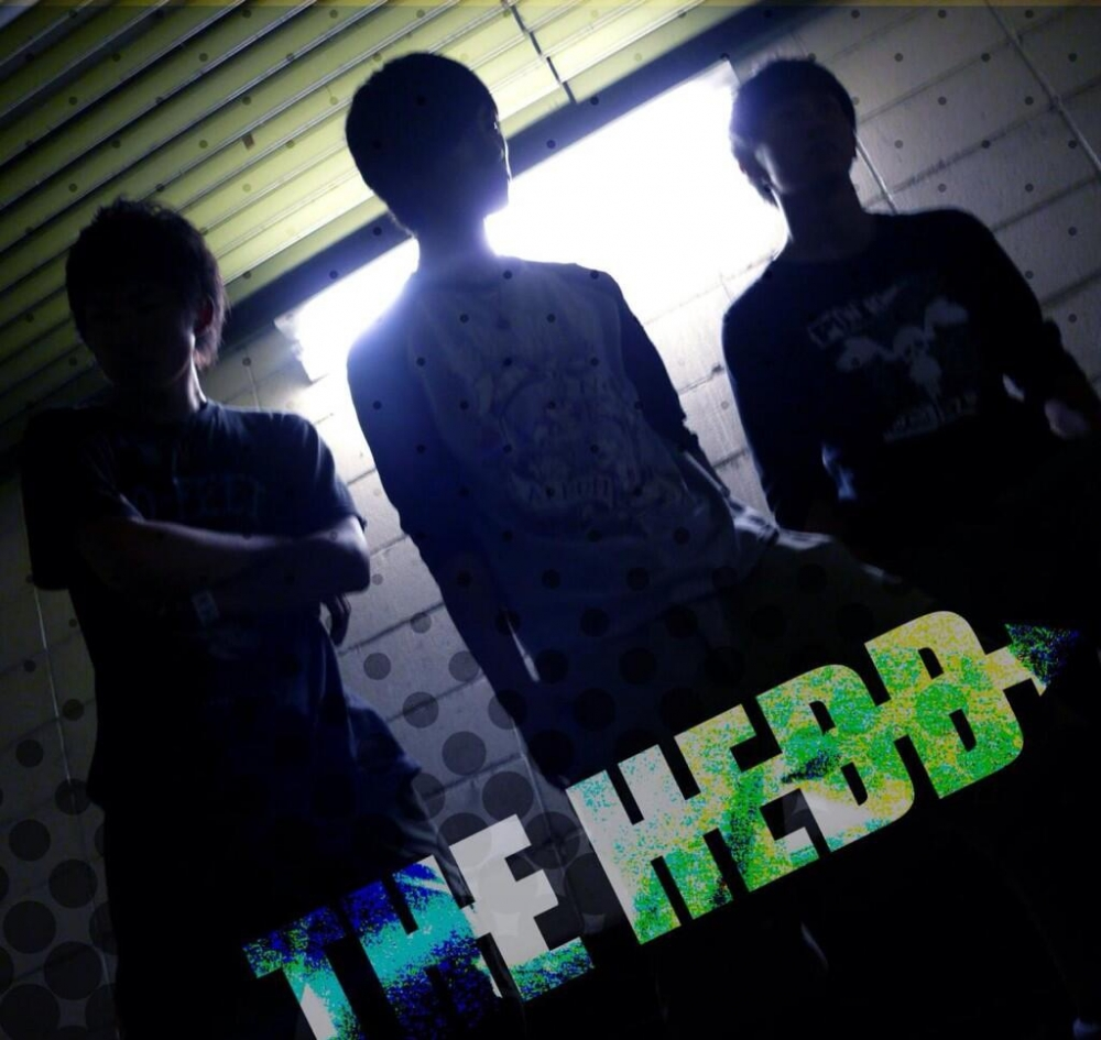 THE HEDD