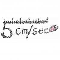 5cm/sec