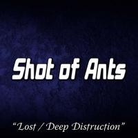 Shot of Ants