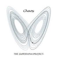 THE SUPERNOVA PROJECT