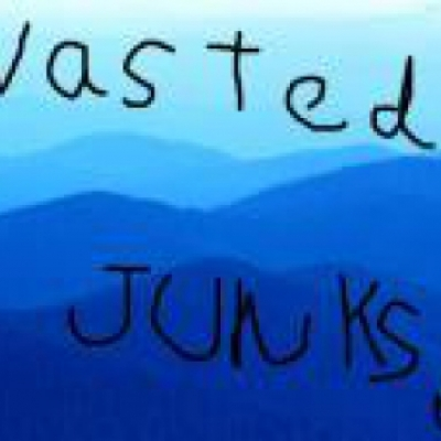 wasted junks