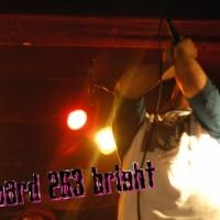 coward 263 bright