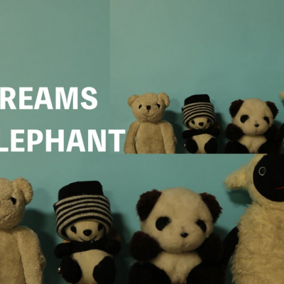 DREAMS OF ELEPHANT