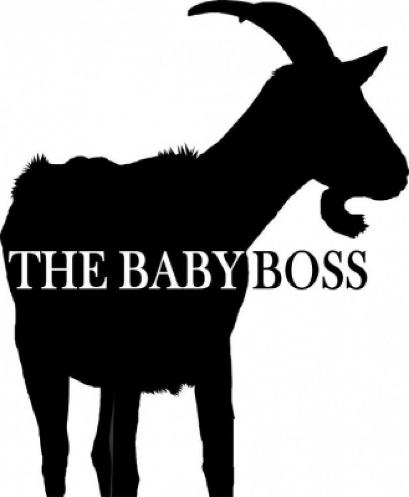 theBabyBoss