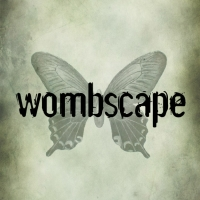 wombscape