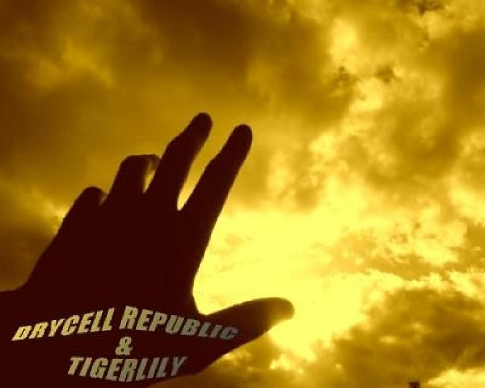 DRYCELL REPUBLIC&TIGERLILLY
