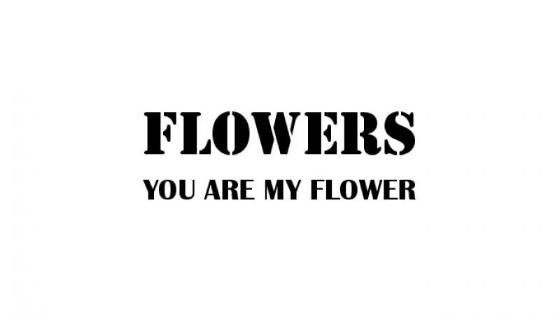 フラワーズ 1st Album『YOU ARE MY FLOWER』ダイジェスト②