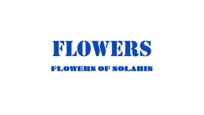 フラワーズ『FLOWERS OF SOLARIS』EP ダイジェスト