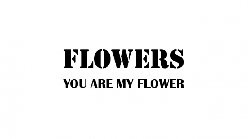 フラワーズ 1st Album『YOU ARE MY FLOWER』ダイジェスト①