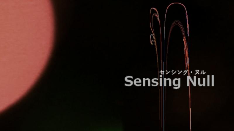 センシング・ヌル - Sensing Null